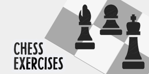 Create and practice on a series of chess exercises in your browser (TODO)